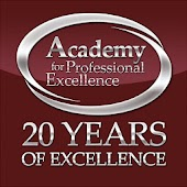 Academy for Professional Excel