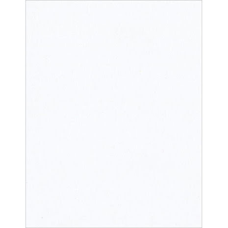 Bazzill Cardstock 8.5X11 25/Pkg- Smooth White