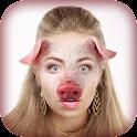 动物的脸 照片蒙太奇 icon