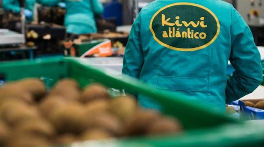 Kiwi Atlántico trabaja para valorizar los subproductos del kiwi
