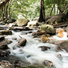 The Rocks by Deborah Bisley - Landscapes Waterscapes ( water, stream, park, waterfall, trees, jourama falls, rocks,  )