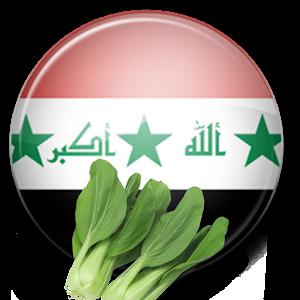 وصفات و اكلات عراقية