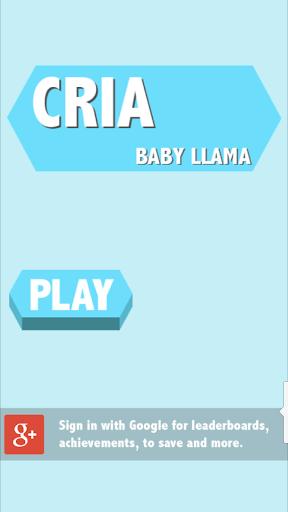 Cria: Baby Llama
