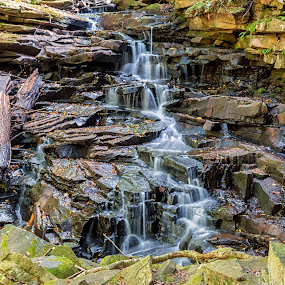 Water on the rocks by Dave Bradley - Nature Up Close Rock & Stone ( water, nature, flowing, outdoor, moss, stone, rocks )