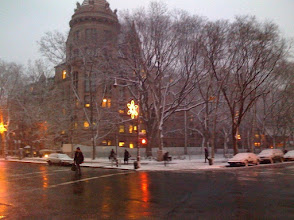 Photo: Museum of Natural History