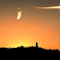 Profili al tramonto di