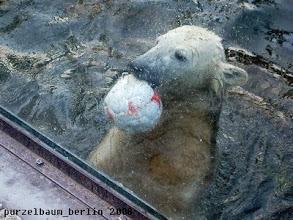 Photo: Stolz wird der Ball vor der Besucherscheibe praesentiert :-)