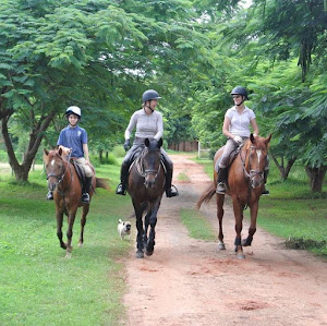 Three horse riders laughing and having a good time after their lesson in Zambia, Africa