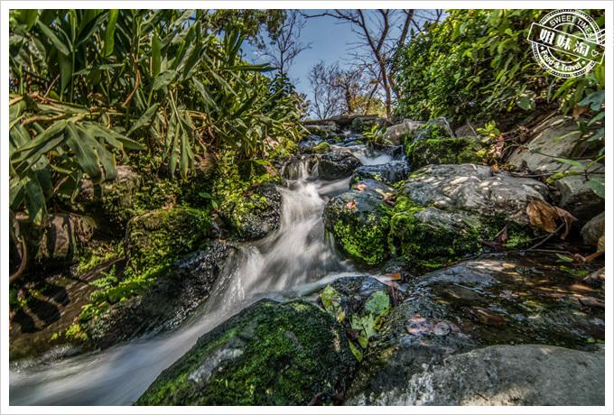 大東溼地公園水流