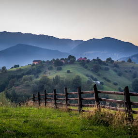 In the morning by Adrian Ioan Ciulea - Landscapes Mountains & Hills ( hedge, mountain, grass, fog, trees, morning )