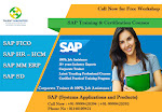 Get high scale placements easily By Pursuing SAP FICO Certification
