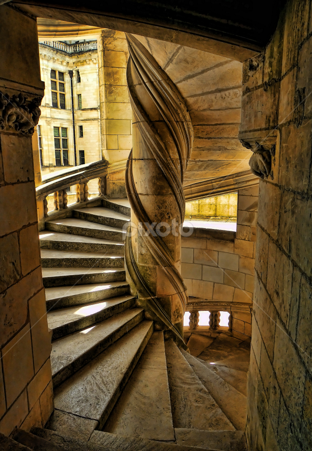 Chambord castle by Marco Caciolli - Buildings & Architecture Architectural Detail ( pwcdetails )
