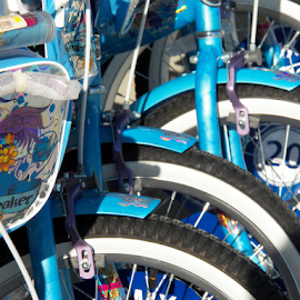 Blue Bikes by Leah Zisserson - Transportation Bicycles ( bikes, blue, metal, store, retail, group )