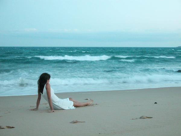 THE OCEAN'S SHORE