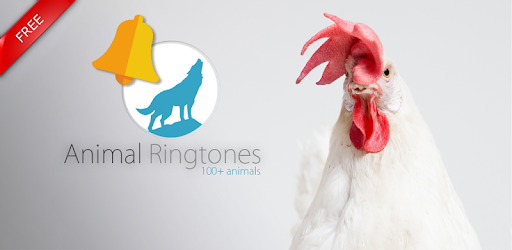 Animals: Ringtones - Apps on Google Play