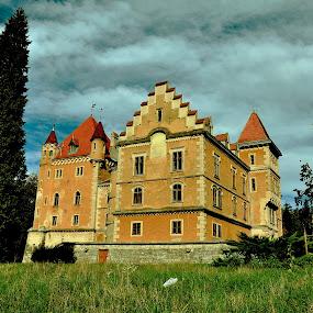 Castle by Dragutin Vrbanec - Buildings & Architecture Public & Historical