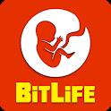 BitLife - Life Simulator icon