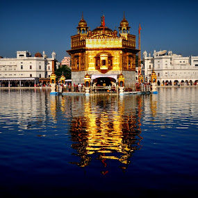 swaran mandir golden temple amritsar in india by Parvesh Rana - Buildings & Architecture Places of Worship