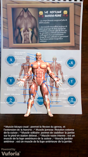 Anatomia- screenshot thumbnail