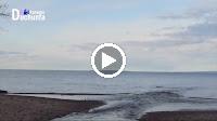 Sông Đắc Krông Mùa Xuân Về – Trọng Tấn