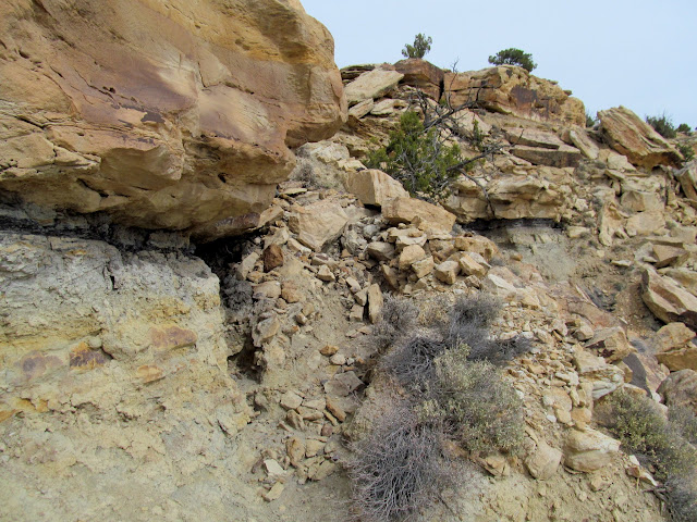Eroded stock trail into Rock Canyon