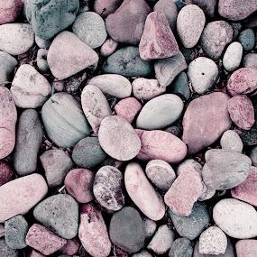 Soul of Stone by Anh Nguyen - Nature Up Close Rock & Stone ( pattern, wyoming, soul, stone, rock, laramie )
