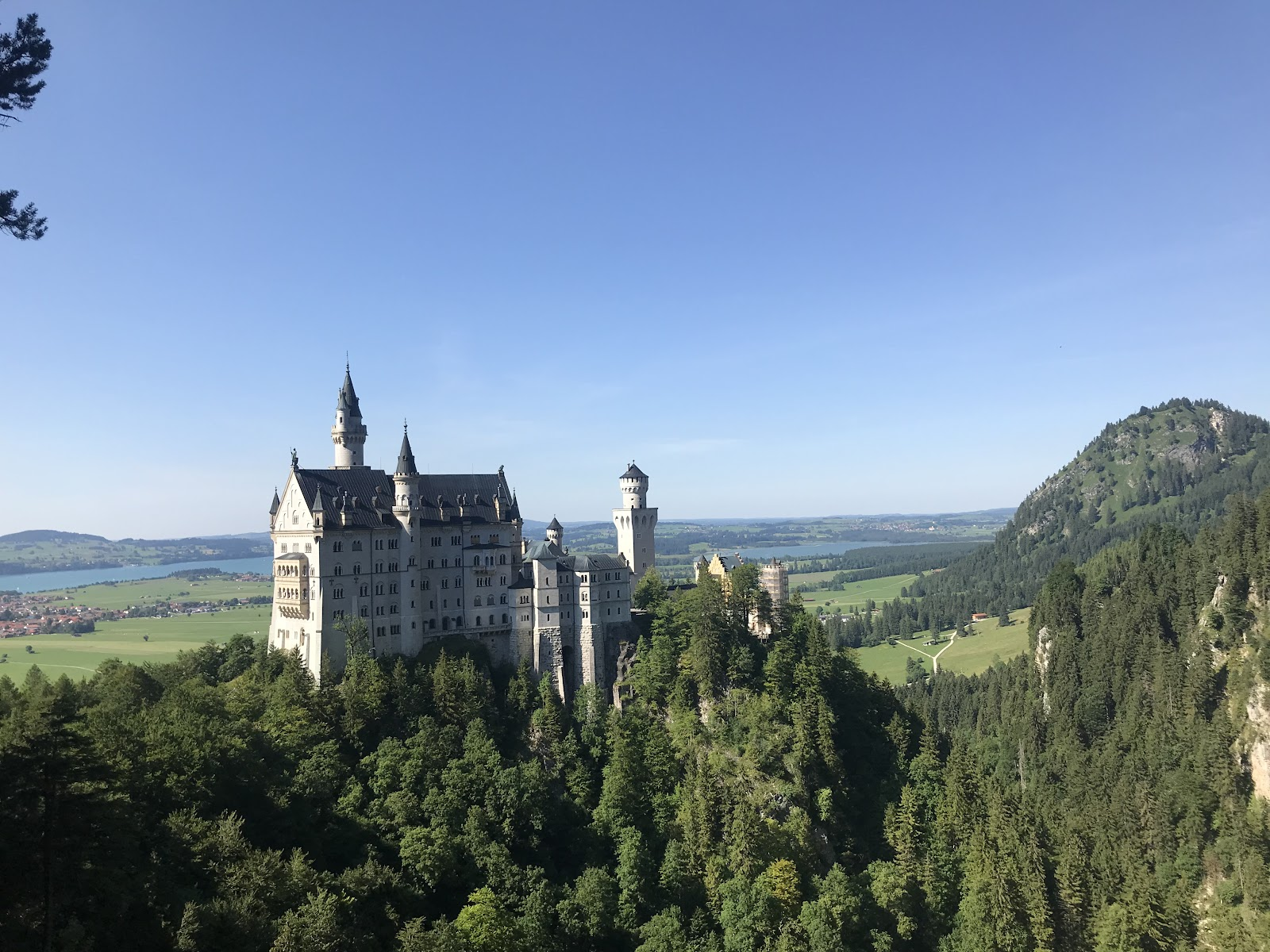 neuschwanstein white magical disney castle on green hill forest greenfields and lake in background germany bavaria. See it during a short day trip from Munich with Rentalmoose