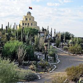 Tovera Castle by Nancy Young - Buildings & Architecture Homes ( hill, castle, shape, cactus, architecture, home )