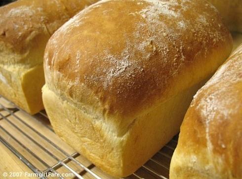 Judy Grube's White Bread Recipe