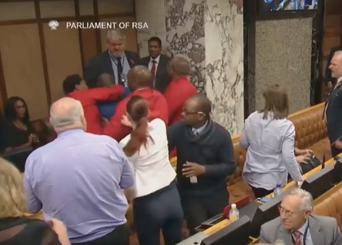 EFF and Agang SA parliamentarians fight during Cyril Ramaphosa's Q&A.