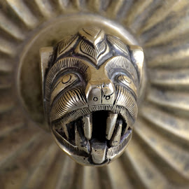 Door Handle by Sanjeev Kumar - Artistic Objects Antiques (  )