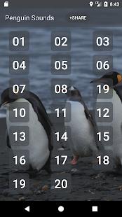Penguin Zvuky - náhled