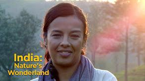 India: Nature's Wonderland thumbnail