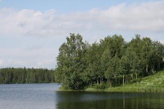 Photo: Niemen nokka