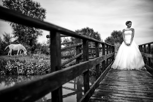 Wedding photographer Barbara Fabbri (fabbri). Photo of 16.03.2016