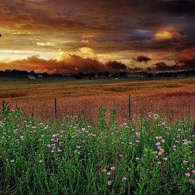 WV Heavenly Sunset above a Country Farm by Forest Wander - Landscapes Prairies, Meadows & Fields ( farm, heavenly, west virginia, sunset, country )