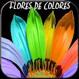 Flores de Colores para compartir y enamorar