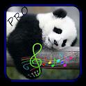 Sleep Therapy Pro icon