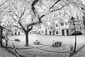 Photo: Old Lisbon (Clive Haynes)
