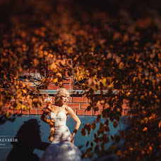 Wedding photographer Andrey Raevskikh (raevskih). Photo of 29.01.2015
