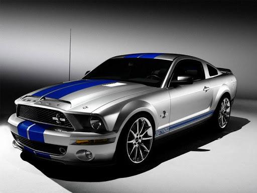 Mustang Wallpaper Gallery
