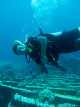 Photo: Rhone Reef