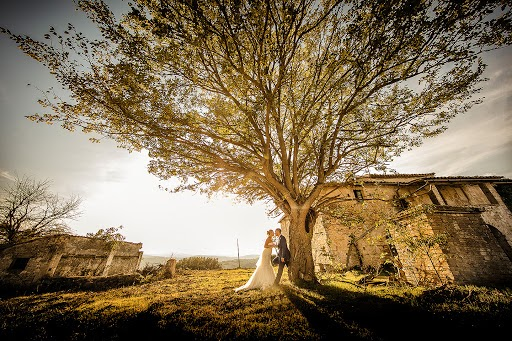 Wedding photographer Cristiano Ostinelli (ostinelli). Photo of 24.09.2016