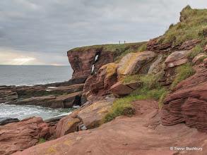 Photo: Seaton Cliffs, Arbroath