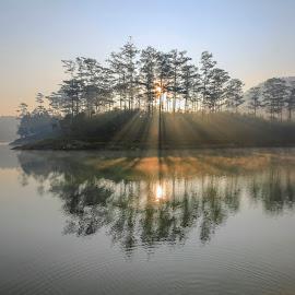 Island rays by Trang Võ - Uncategorized All Uncategorized ( ray, mountain, fog, trees, lake, pine )