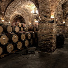 Castello di Amorosa -Underground Cellars by Krishna Murukutla - Artistic Objects Other Objects ( wine barrels, cellars, light, inanimate objects, portrait,  )