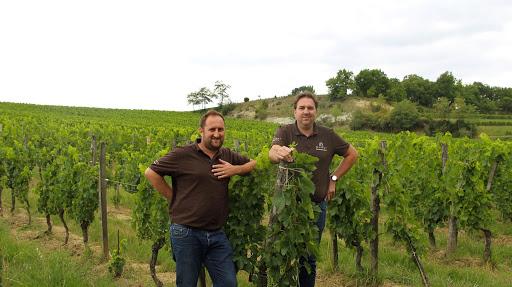 Vins Saint Emilion - Château Mangot