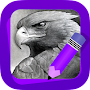 Learn How to Draw Eagles APK icon