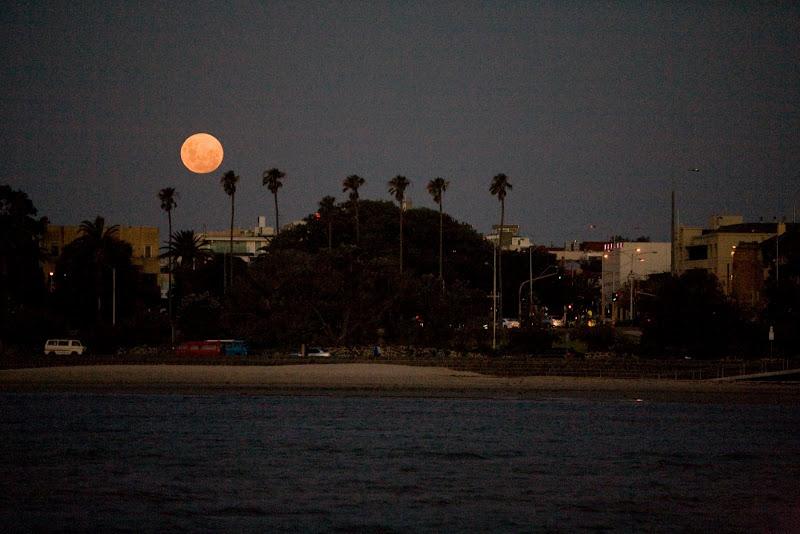 moon appearance tonight