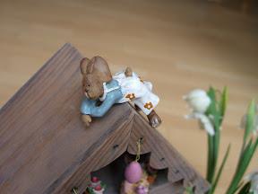 Hase auf dem Dach